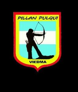 logo-pillapulqui